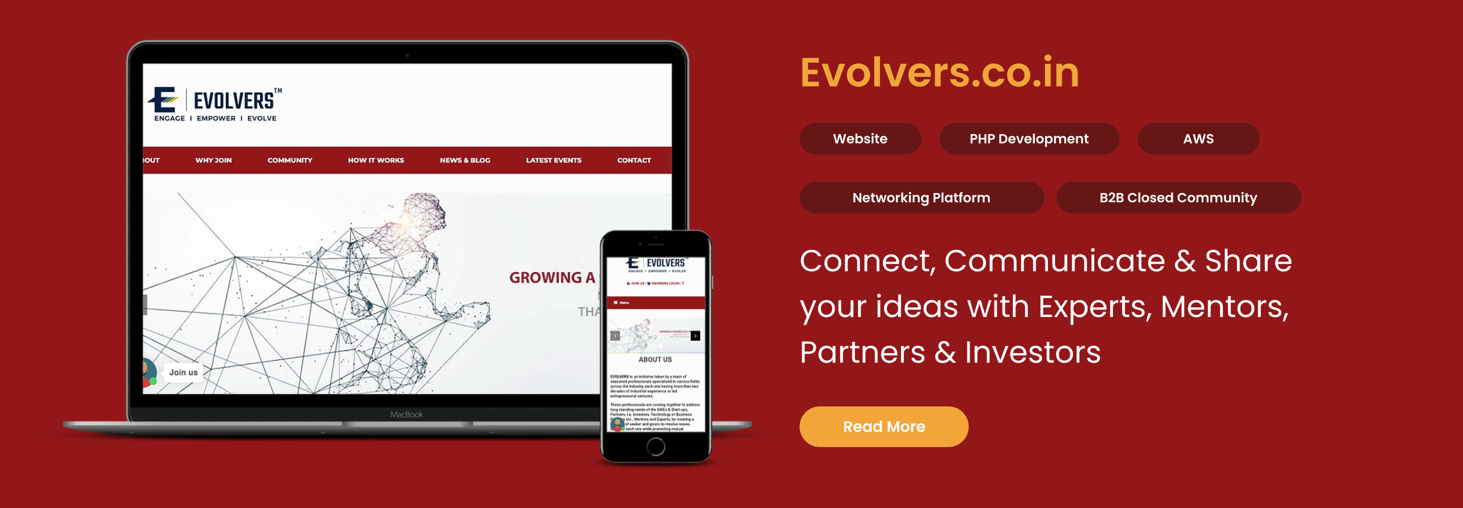 evolvers web development